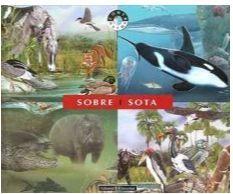 SOBRE I SOTA