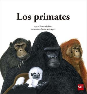 LOS PRIMATES